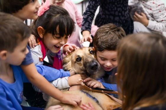 foto de crianças com um cachorro