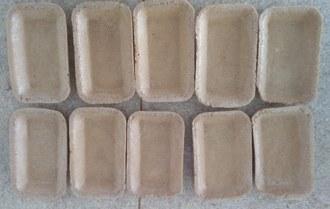 Imagem mostra duas fileiras com 5 bandejas cada. As embalagens estão dispostas uma ao lado da outra sobre uma bancada.